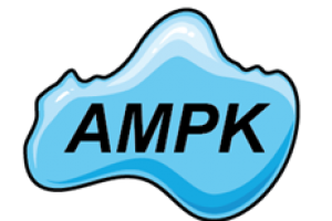 AMPK-300x200-c-default